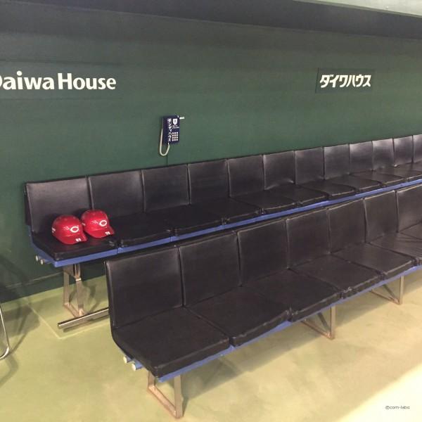 インタビューはこのベンチにて行いました。