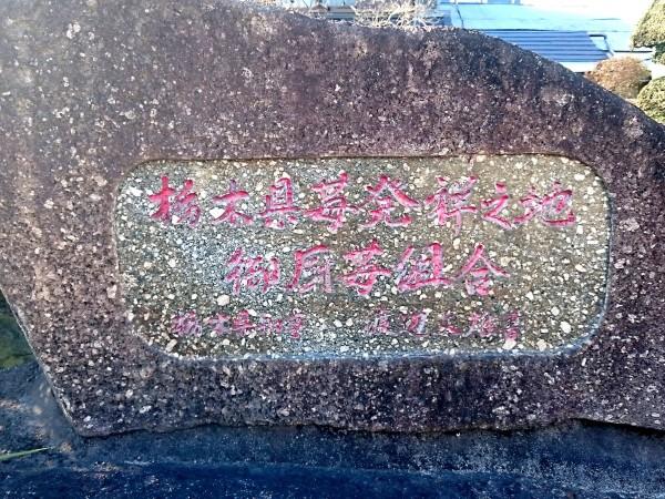 仁井田家の敷地内にある「栃木県苺発祥之地」の記念碑