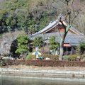 お寺で屋台のコーヒー店!?山川長林寺にある「寺カフェ」