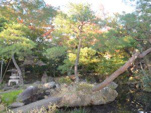 織物の模様のような石がある名勝地。足利市にある「物外軒(ぶつがいけん)庭園」
